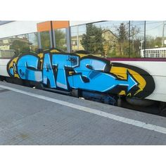 CATS Foto que pasa @imtejax !!!  @blcwarriors @blcwarriors @blcwarriors #graffiti #wallart #walls #wall #graffitiart #ontheroad #wild #urbanart #arteurbano #graff #daycolors #spraypaint #blegends #bcnlegends #platform58 #barcelona #igersbarcelona #bombing #mural #ironlak #mtn #hiphop #cats by urbangraffitis