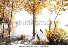 The Magical infrared efex by Nelson garrido Silva, via Shutterstock