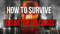 Crucial Survival Solution That Can Protect Your Love Ones When Disaster Hits Survival Essentials, Survival Tips, Emergency Food Kits, Surviving In The Wild, Combat Training, Hand To Hand Combat, Fb Page, Self Defense