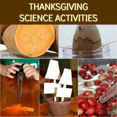 A collection of Thanksgiving science and sensory activities for preschool, pre-k, and kindergarten classrooms; Pre-K Science Center Fall Science Activities For Toddlers, Science For Kids, Science Fun, Summer Science, Science Chemistry, Science Education, Earth Science, Stem Activities, Thanksgiving Crafts For Kids