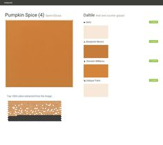 Pumpkin Spice (4). Semi-Gloss. Wall and counter glazed. Daltile. Behr. Benjamin Moore. Sherwin Williams. Valspar Paint.  Click the gray Visit button to see the matching paint names.