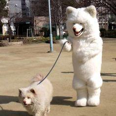 chien et chien