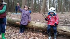 Willow fishing rod game