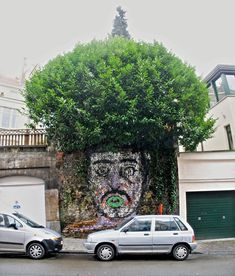 Street Art uses Plants as Hair