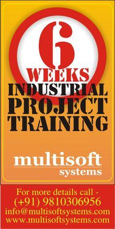 http://www.multisoftsystems.com/6weekssummertraining.php