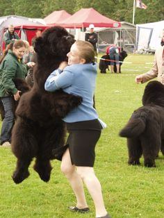 Wonder how a newfie hugs.....thats how! #newfoundland