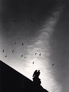 Fourteen Birds, Michael Kenna -repinned by Long Beach, CA studio photographer http://LinneaLenkus.com  #photography