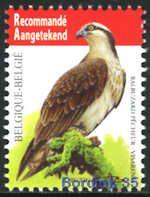 4090 - Vogels - Visarend - 4,70 - André Buzin - op WIT papier