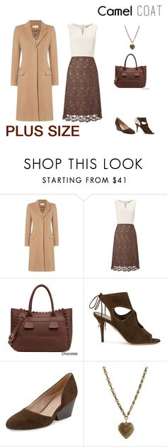"""Untitled #103"" by jessicasanderstx ❤ liked on Polyvore featuring Phase Eight, Pink Haley, Aquazzura, Eileen Fisher, Etro, plus, curvy, camelcoat and september2016"