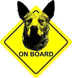 Australian #cattle dog - on #board - car #sticker sign / decal bumper,  View more on the LINK: http://www.zeppy.io/product/gb/2/272151215158/
