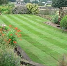 Turf laying advice Lawn Care, Garden Inspiration, Golf Courses, Advice, Gardening, Tips, Lawn Maintenance, Lawn And Garden, Horticulture