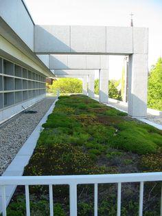 Skokie+Public+Library+Green+Roof