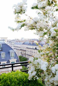 Paris Blue Roofs & White Spring Blossoms