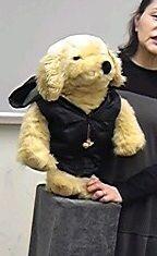Vent-michiko`s dog