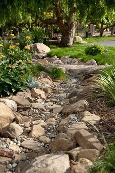the line of dark rocks creates a very serene gravel garden/dry creek.I am going to be putting in a dry creek bed in my backyard at the end off my down spout where all of the mulch always washes away.I already have all of the rock to put in place. Landscaping With Rocks, Front Yard Landscaping, Landscaping Ideas, Dry Riverbed Landscaping, Landscaping Software, Country Landscaping, Landscaping Edging, River Rock Landscaping, Landscaping Melbourne
