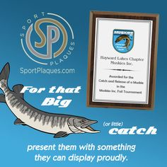 So they have the plaque to prove it. #MyFishWasThisBig #FishingTournament #FishingAwards Apple Word, Student Of The Month, Slate Board, Award Plaques, Fishing Tournaments, Star Students, Sports Awards, Math Words, Recognition Awards