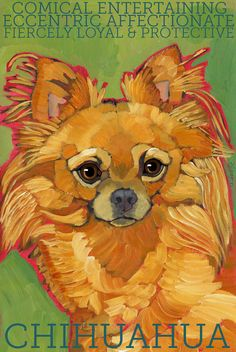 "Chihuahua No. 8 - Art Print 8.5x11"" dog breed pet portrait red longhair purse puppy toy"