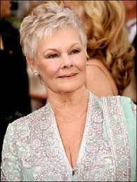 I didn't say this either, but it also fits: Judi Dench is so comfortable in her stylish short hair. Love her and her hair. Helen Mirren, Judy Dench Hair, Judi Dench Hairstyle, Short Hair Cuts For Women, Short Hair Styles, Stylish Short Hair, Tony Award, Mom Hairstyles, Haircuts