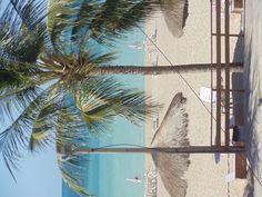 #Beach #Maragogi #Alagoas #Brazil