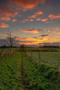 Path to Sunset, Honthem  Photo © Maurice Hertog Fotografie