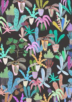 plant pots,