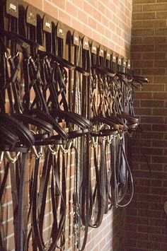 Bridles neatly stored. Can put name of horse above on name plate