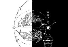 Geometric Pisces
