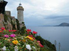 Vista floreale casa di Napoleone Villa dei Mulini su http://www.aisoladelba.it