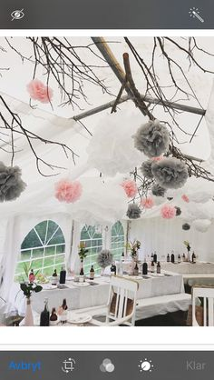 Bröllop partytält wedding