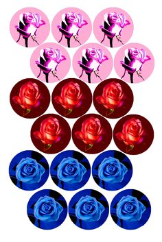 Fantasy Roses Bottle cap image pack Formatted for printing on x photo paper Bottle Cap Projects, Bottle Cap Crafts, Diy Bottle, Bottle Caps, Carta Collage, Bottle Cap Jewelry, Decoupage Printables, Collage Template, Bottle Cap Images