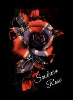 Conferate rose