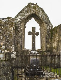 'Roscommon Friary Window'. This is a shot of a grave and window from Roscommon Dominican Friary, founded in 1253 by Felim O' Connor, the King Of Connaught. The original lancet windows in the east and west walls were replaced with traceried windows in the fifteenth century. Photo by Joseph Smith.