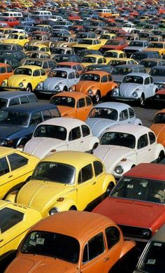 Mostly Beetles, but there are some Dashers, 412s, and some T2s.
