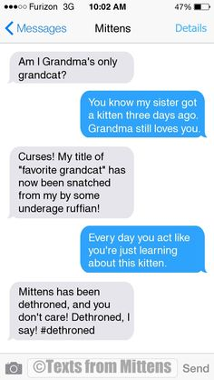 NEW Daily Mittens: The Kitten EditionMore Mittens at Catster.com.Order a copy of the Texts from Mittens book!