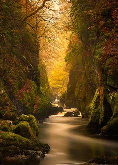"""Fairy Glen Gorge, River Conwy ~ Craig McCormick """