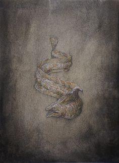 Moray Eel - Artist Winkstink #drawing #charcoal #pencil #watercolor #ColoredPencil #art #floating #illustration