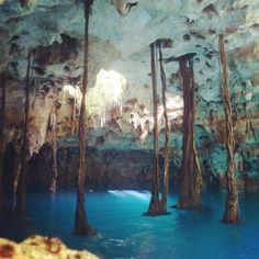 Xenote Lu'um  #Cancun #Cenote #RivieraMaya