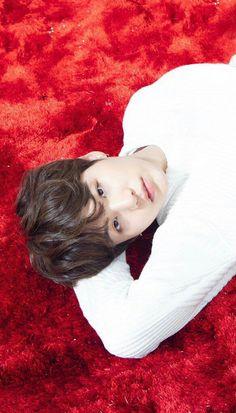 Him looks like a kitty in a bed. Daegu, Bts Bangtan Boy, Bts Boys, Jhope, Bts Jimin, Meme Photo, Bts Photo, Agust D, Min Yoongi Bts