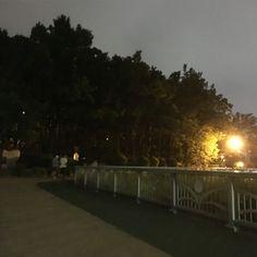 6월6일 밤 용지공원 ❣