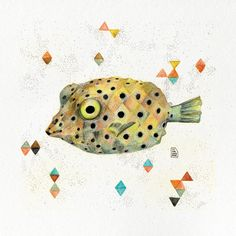 MISCELANEA · Artworks: Peix Cofre -