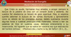 """MISIONEROS DE LA PALABRA DIVINA: MEDITACIÓN DEL EVANGELIO - """"Recibir la Palabra en ..."""