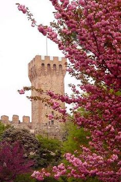 Este, antica città verde. ~ Web Magazine