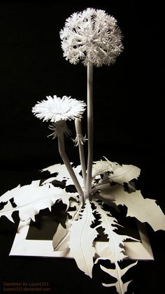 "Floral Paper Sculpture ""Snow Dandelion"" by // papercraft; Kirigami, Papercut Art, Paper Engineering, Book Sculpture, Paper Sculptures, Paper Magic, Paper Book, 3d Paper Art, Origami Paper"