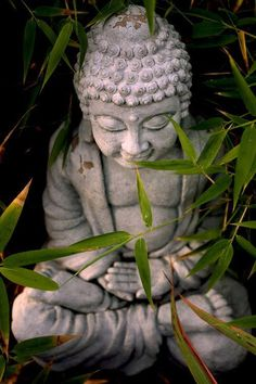 Meditation is in every moment, every breath... it's awareness, it's consciousness. ~Adamus St Germain ^