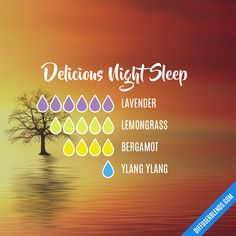Delicious Night Sleep Essential Oil Diffuser Blend remedies for allergies remedies for constipation remedies for diabetes remedies for eczema remedies for sleep Sleeping Essential Oil Blends, Essential Oils For Sleep, Essential Oil Diffuser Blends, Essential Oil Uses, Sleepy Essential Oil Blend, Doterra Diffuser, Helichrysum Essential Oil, Doterra Essential Oils, Doterra Blends