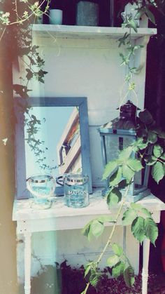 Garden ⚓️
