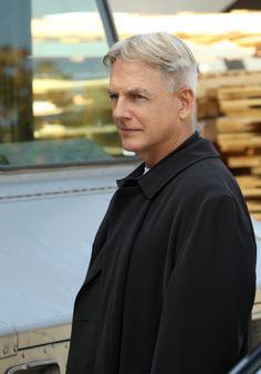 """NCIS Photos: Silver Fox in """"Gut Check"""" Season 11 Episode 9 on CBS.com"""