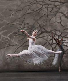 The Australian Ballet's Imogen Chapman in Peter Wright's The Nutcracker. Ballerina Dancing, Ballet Dancers, Peter Wright, Ballet Shows, Ballet Dance Photography, Australian Ballet, Ballet Companies, Dance Movement, Ballet Beautiful