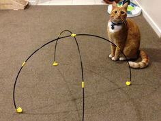 Treat your kitty cats with a 3D printed tent!