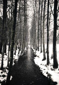 beauty of winter..    via Daniella Witte